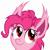 Pinkie bat