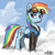 Furious Flyer Dashie