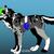 Crystalthegamerwolf