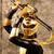 GoldRanger14