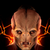 The Didact99