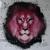 Pink lion123