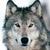 Angelwolf970