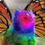 RainbowKitty7