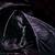 DarkShadowDragon