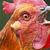 TheSquidychicken