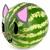 Kitty Watermelon