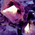 Shadow 3 the Nightwing