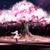 Sakura Nistvill