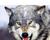Wolfgirl12390