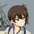Admiral Mikado