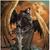 Angel of death 77