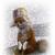 FoxyTheCunningFox