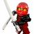 Ninja of Fire