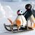 Pingu21