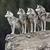 Wolfboy231