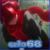 Erlo68