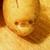 Derpypotato