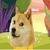 Adventure Doge