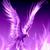 PhoenixFeather2011