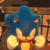 PKMNthehedgehog2.5