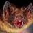 Greg the Bat's avatar
