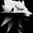 DieWalzl's avatar