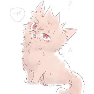 Bakugou Kitten Cat's avatar