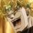 Marioredtoad's avatar