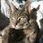 Гроза Над Рекой's avatar