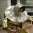 JustWilhelm's avatar