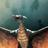 Rodan TheFireDemon's avatar