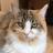 OmiCat4869's avatar