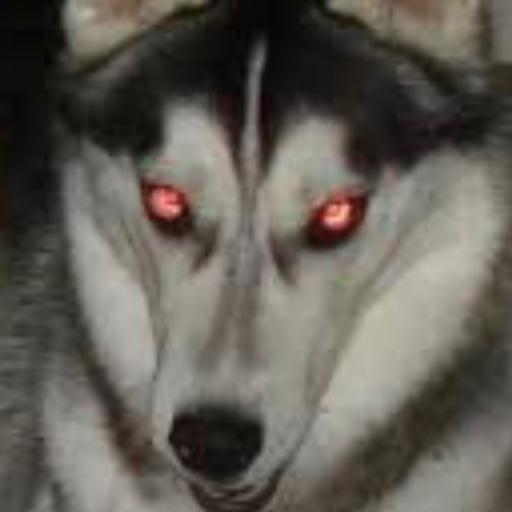 XxFake Smilesxx's avatar