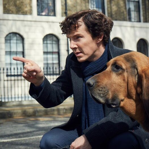Next series of Sherlock could be last, BBC show's creator warns