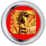 NinjaKM's avatar