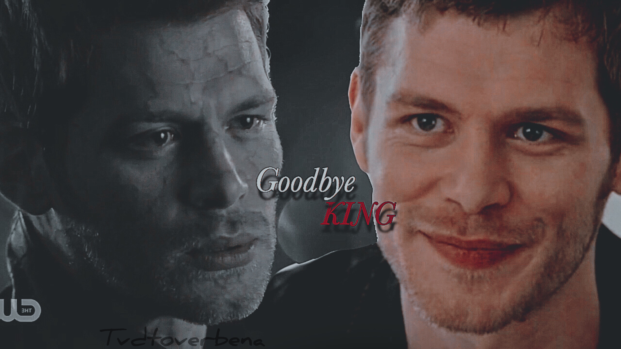 Niklaus Mikaelson ♥️