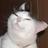 EncouragingShoom's avatar