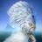 Vendeur's avatar