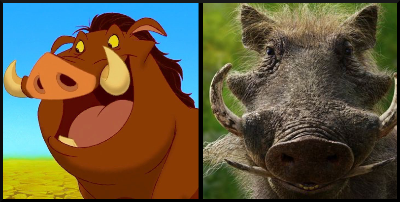 Pumbaa from The Lion King- Then vs. Now, which character's appearance do you prefer?