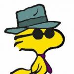Vip 8's avatar