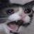 AncientBastard's avatar