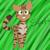 Cheetahstar2334