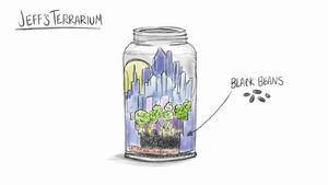 Jeff's Terranium