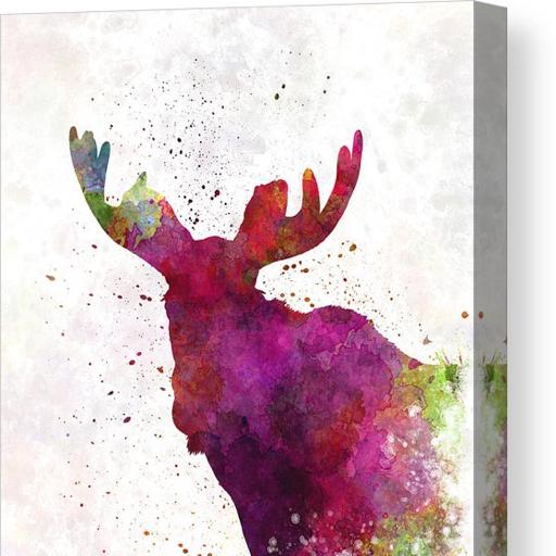 Moose05's avatar