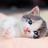IKxrma's avatar