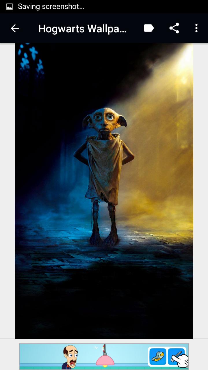 Dobby the free elf😍❤⚡