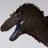NanoLancensis's avatar