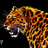 DvgSeventeen's avatar