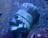 ThatRetro's avatar